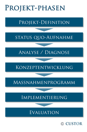 Projektphasen_Custor