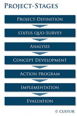 Project-stages Consulting CUSTOR